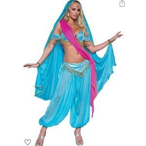 Exotic Jewel of the East halloween costume